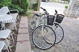 Ayutthaya Bike